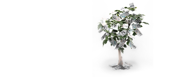 Money growing on a tree
