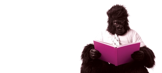 Gorilla reading a book